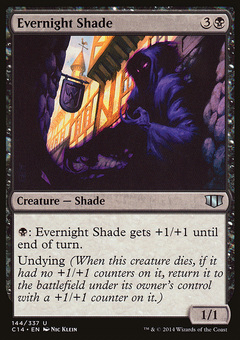 Evernight Shade